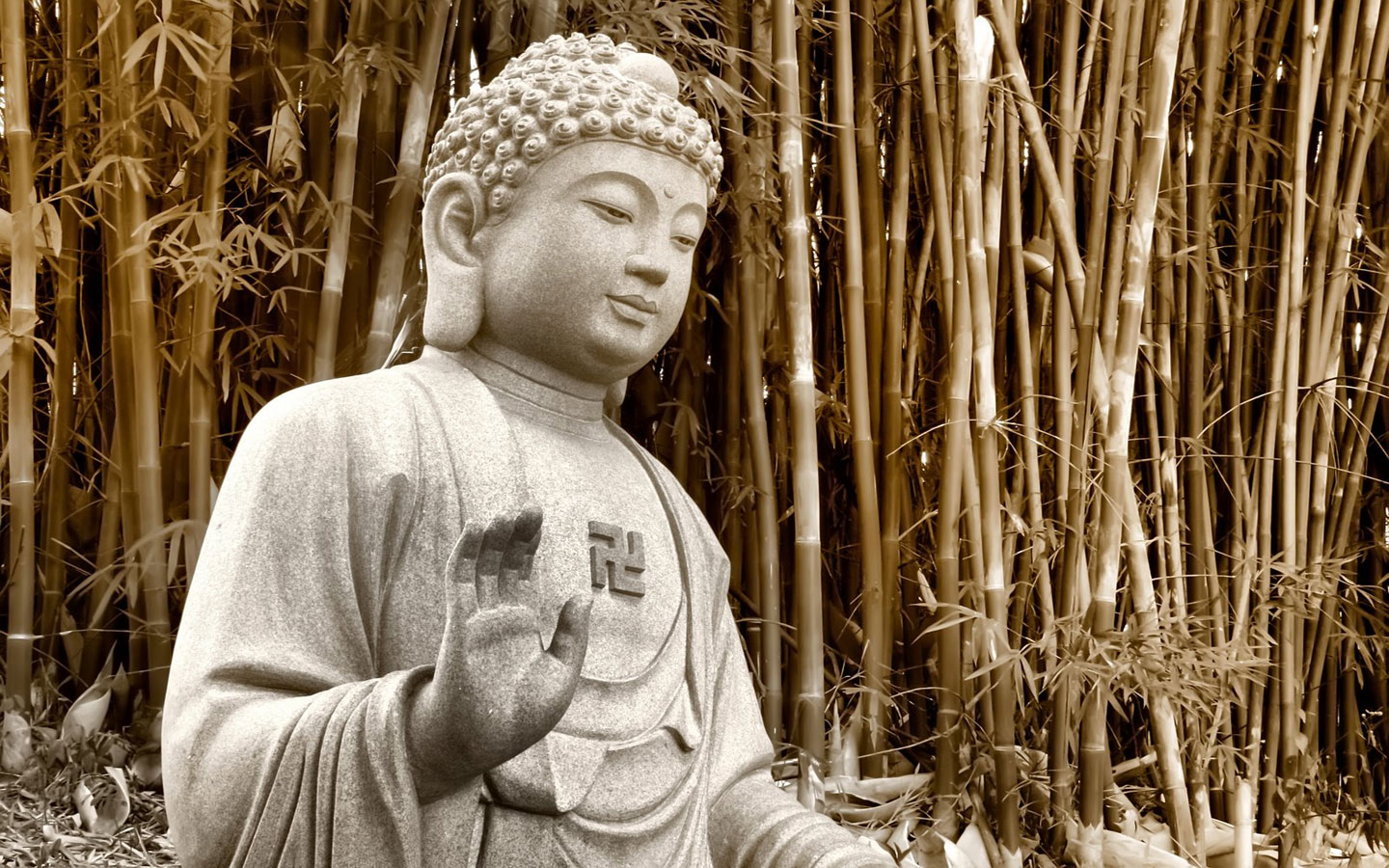 the history and importance of buddha the enlightened one